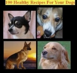 100 Healthy Dog Recipes